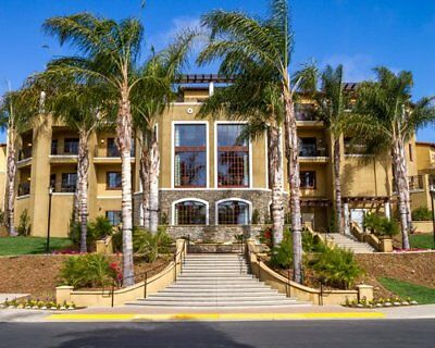Hilton Points Grand Pacific Marbrisa 2 Bedroom Odd Year Timeshare For Sale