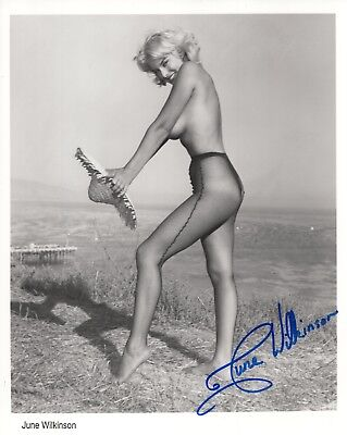 JUNE WILKINSON HAND SIGNED 8x10 PHOTO+COA    YOUNG+GORGEOUS    SEXY FISHNETS