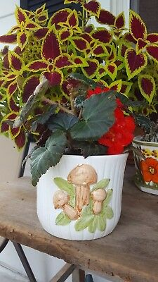 Vintage Pottery Planter Mushrooms - McCoy Style Ceramic Indoor Planter