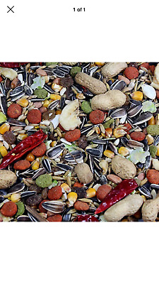 parrot food everyday feed for parrots Nuts And Seed Mix Best Pets Brand