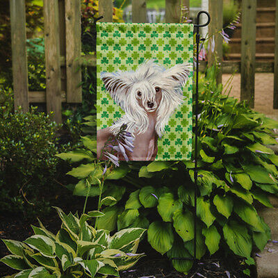 Chinese Crested St. Patrick's Day Shamrock Portrait Flag Garden Size