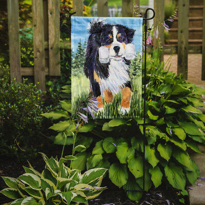 Carolines Treasures  SS8860GF Bernese Mountain Dog Flag Garden Size
