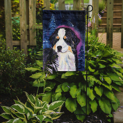 Carolines Treasures  SS8446GF Starry Night Bernese Mountain Dog Flag Garden Size
