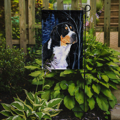 Carolines Treasures  SS8393GF Starry Night Bernese Mountain Dog Flag Garden Size