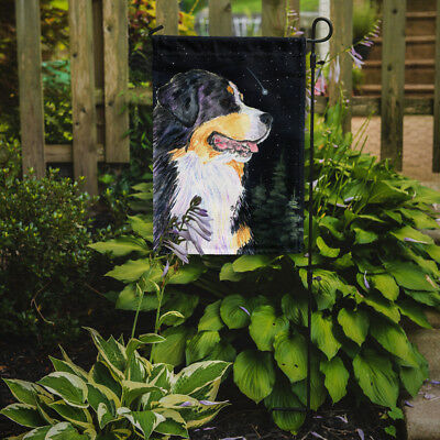 Carolines Treasures  SS8512GF Starry Night Bernese Mountain Dog Flag Garden Size
