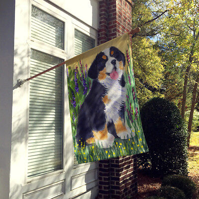 Carolines Treasures  SS8215CHF Bernese Mountain Dog Flag Canvas House Size