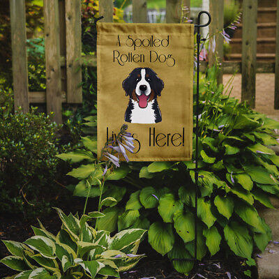 Bernese Mountain Dog Spoiled Dog Lives Here Flag Garden Size