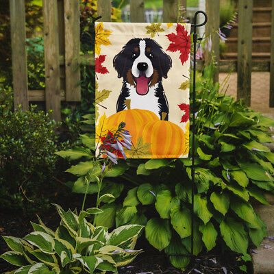 Carolines Treasures  BB2043GF Bernese Mountain Dog Thanksgiving Flag Garden Size