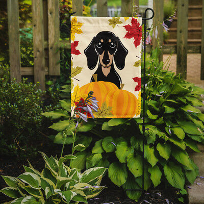 Smooth Black and Tan Dachshund Thanksgiving Flag Garden Size
