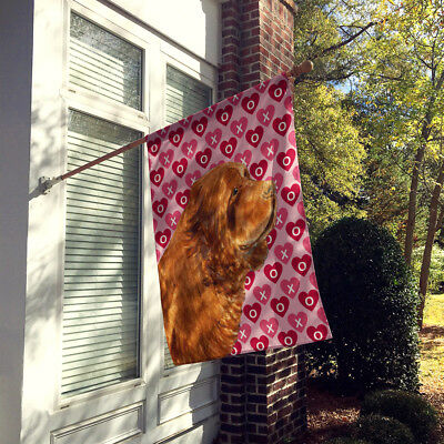 Sussex Spaniel Hearts Love and Valentine's Day Portrait Flag Canvas House Size