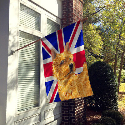 Norwich Terrier with English Union Jack British Flag Flag Canvas House Size