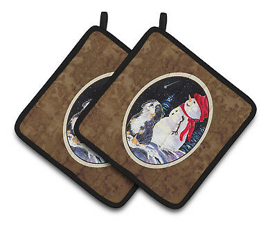 Carolines Treasures  SS8575PTHD Bernese Mountain Dog Pair of Pot Holders