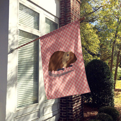 Coypu Nutria River Rat Pink Check Flag Canvas House Size