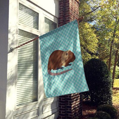 Coypu Nutria River Rat Blue Check Flag Canvas House Size