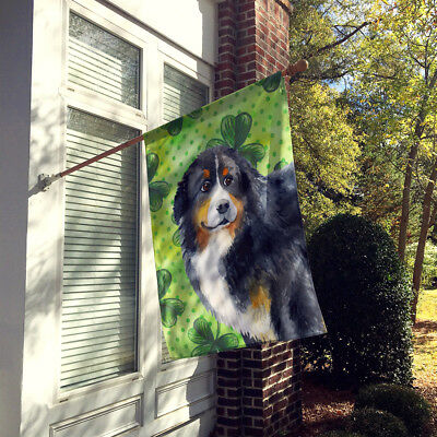 Bernese Mountain Dog St Patrick's Flag Canvas House Size