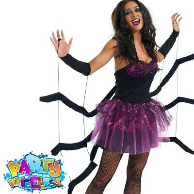 CA757 Spiderella Costume Halloween Widow Spider Web Fancy Dress Up Outfit Witch