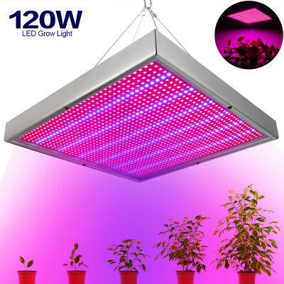 120W LED Grow Light Red Blue Spectrum Hydroponic Indoor For Veg Flower Medical