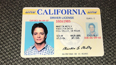 Marty McFly ID CARD - Back to the Future - Michael J Fox - License - Prop Mc FLY