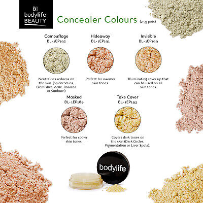 Bodylife Beauty Makeup Natural Mineral Concealers 2.5g