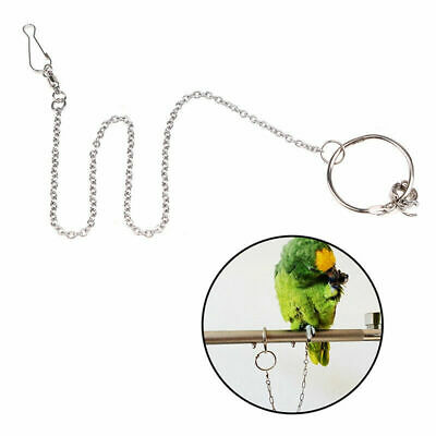 Stainless Steel Pet Parrot Foot Ring Fission Chain for Birds Cockatiels Peony