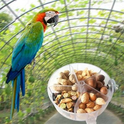 PET Parrot Foraging Wheel Gnawed Toy Bite Food Box Bird Feed Storage Cases Cage