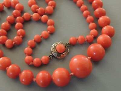 Natural Red NO DYE Coral Bead Necklace Sterling Cabochon Clasp