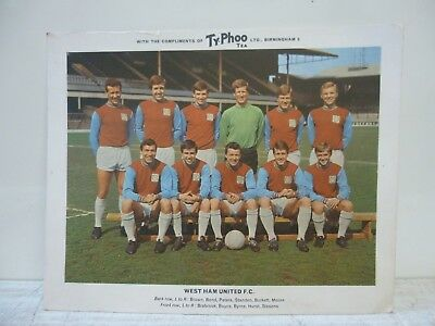 "West Ham United - Vintage 1960's Typhoo Tea Collectable Team Photograph 10"" x 8"""
