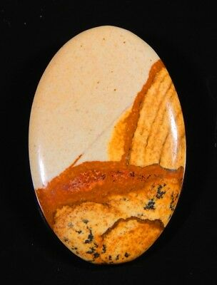 36 Ct  High Quality Natural American Picture Jasper Oval Cabochon Gemstone A139