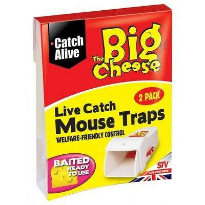 Live Catch Mouse Traps - Pack of 2 By The Big Cheese