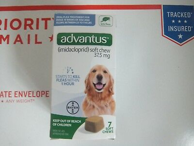 Advantus soft Chews for Dogs 23-110 lbs 7 soft chews