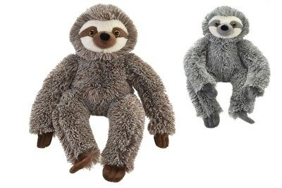 Kandy New Plush Cuddly Sloth Soft Toy Teddy - Ty1919 Furry Animal Monkey Cute