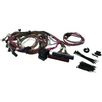 Painless Wiring 60508 1999-2002 GM LS1 Engine Harness