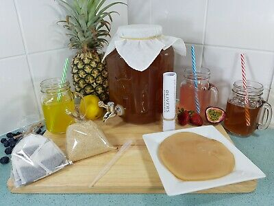 4lt Kombucha Brewing Kit, Scoby, Strong Starter Tea, BPA Free, Easy Instructions