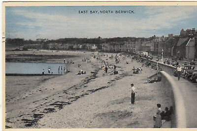 Postcard  - EAST BAY, NORTH BERWICK  (A1)