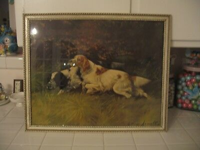 Beautiful Vintage Rare Framed Hunting Dogs In The Field Print By G. Muss Arnalt