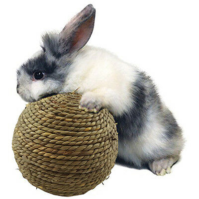 Cheap Guinea Pig Chinchilla Grass Play Ball Exercise Chewing Toy For Rabbit