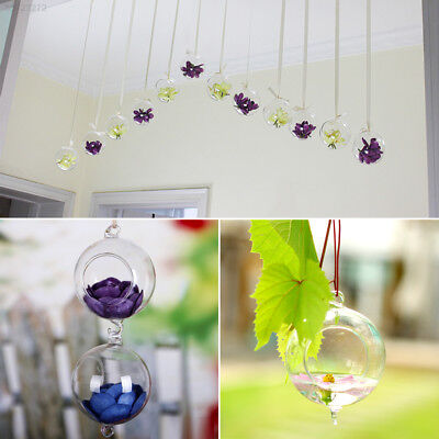 4B2E New Creative Clear Hydroponics Hanging Stand Glass Flower Vase With Hook Ca