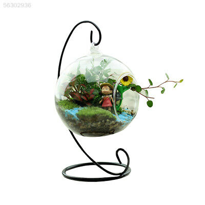 980D New Glass Round with 1 Hole Flower Plant Hanging Vase Home Office Wedding D