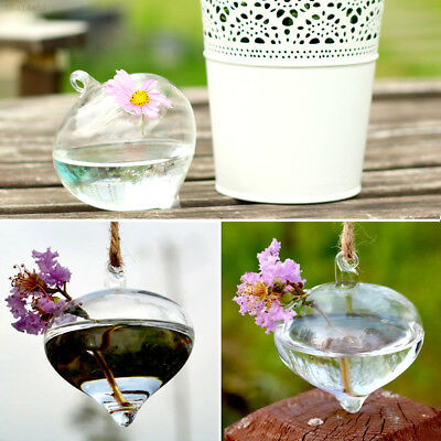 02CD Clear Hydroponics Hanging Onion Glass Vase Candle Holder Terrarium Home