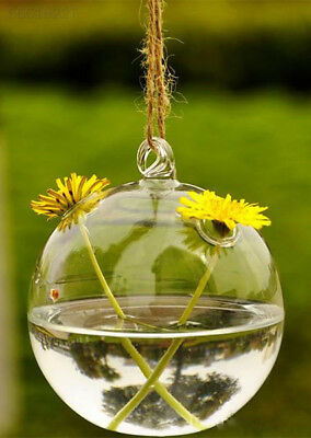 74A6 New Cute Glass Round with 2 Holes Flower Plant Hanging Vase Home Decor