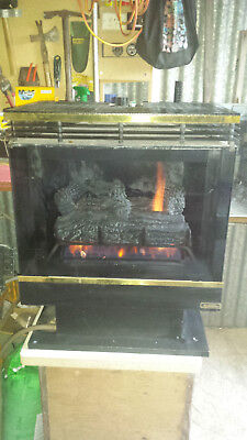 G9000 Ambience GAS LOG HEATER WITH FLUE