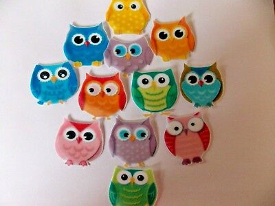 12 PRECUT edible wafer/rice paper Colourful Owls cake/cupcake toppers
