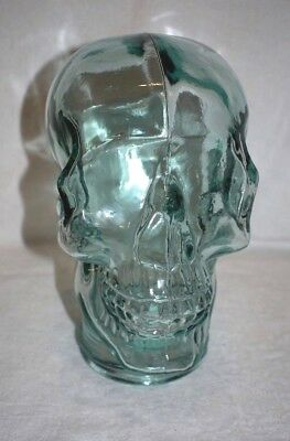 Clear Halloween Skull Mannequin Glass Skeleton Head Wig Hat Display