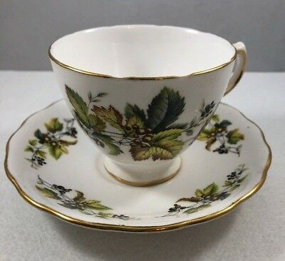 Vintage Royal Vale Rust & Gray Berries, Gold Trim  English China Tea Cup Saucer