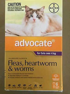 Advocate Flea and Worm Treatment for Large Cats Over 4Kg, 6 Pack