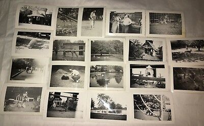 VINTAGE PHOTOS LOT of 11 Catskills Game Farm Zoo 1960s Kodak Velox