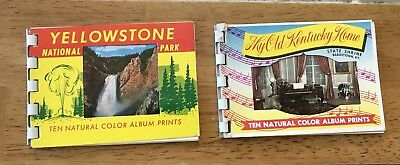 Vintage Picture Postcards Yellowstone National Park And My Old Kentucky Home