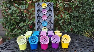Set Of 30 Coloured 9Cm Lightweight Plant Pots With Carry Trays Colour Seed Pot