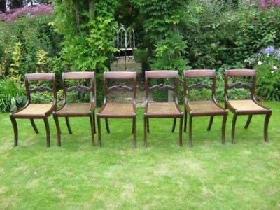 Lovely Set Of 6 Regency Mahogany Dining Chairs - Timeless Style