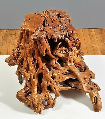 Natural Tree Root Table Stool / Hand-Sanded & Polished / S. China / c.1950-1970
